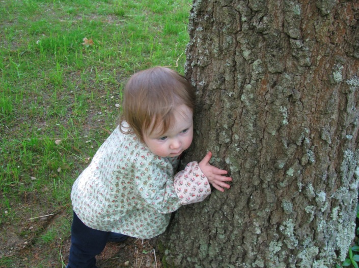 Hugging the tree and listening to its heartbeats.