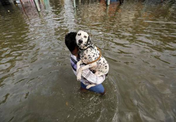 Flooded-Chennai-People-hearts
